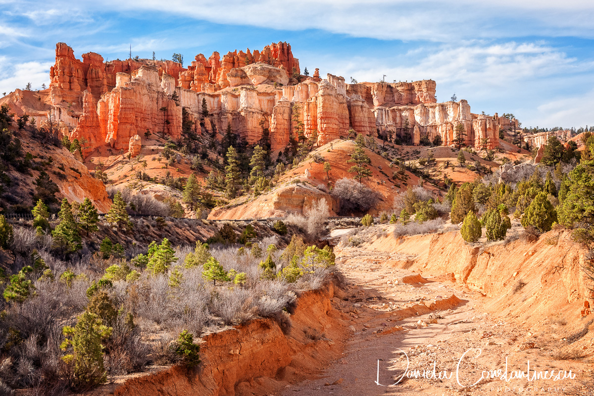 Bryce Canyon National Park   Castle in the sky